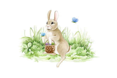Easter bunny with a basket of eggs. on the meadow watercolor illustration. Funny cute little rabbit on the green grass. Traditional greeting Easter symbol image. Hand drawn cartoon hare image.