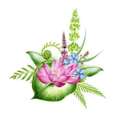 Beautiful flower arrangement with lotus flower and fern leaves watercolor illustration. High quality botanical hand painted illustration of river and lake summer flowers. Isolated on white background.