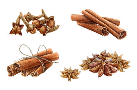 Cinnamon, star anise and clove watercolor illustration set. Hand drawn close up aromatic dry spices for mulled wine collection. Healthy organic herbs for cooking isolated on white background.