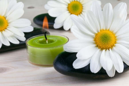 camomile flowers with zen stones, spa concept Stock Photo - 16503545