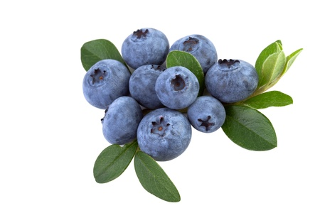 fresh blueberry with leaves isolated on white background