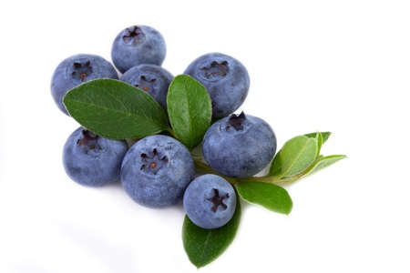 fresh blueberry with leaves isolated on white background Stock Photo - 16550357