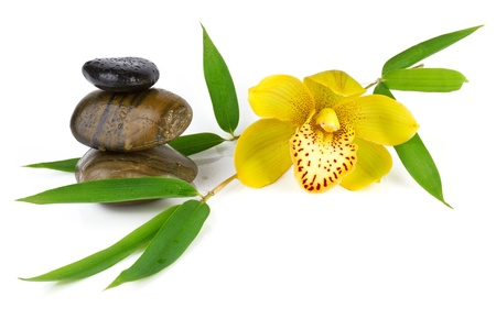 yellow orchid with zen pebbles, isolated on white Stock Photo - 16573330