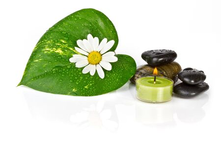 eastern health treatment: Flower with green leaf isolated Spa and health care concept