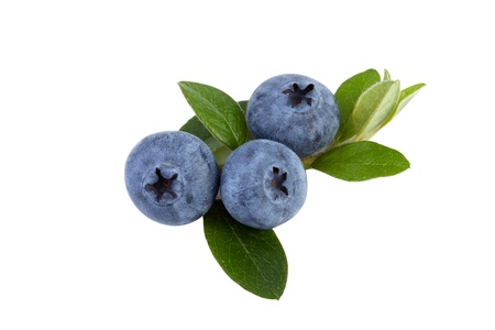 blueberries isolated on white, close up Stock Photo - 16573333