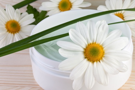 chamomile flower, body care concept Stock Photo - 16577527