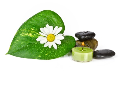 flower with green leaf isolated  spa concept photo