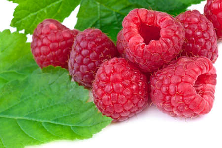 close up of raspberries with leaves  on white background Stock Photo - 17166383