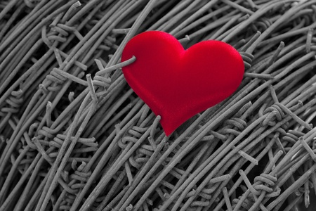 red heart on background of barbed wire photo