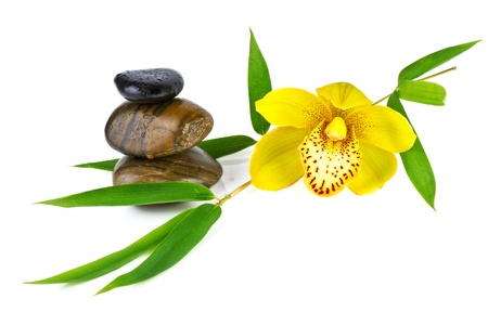 orchid with zen stones isolated on white photo