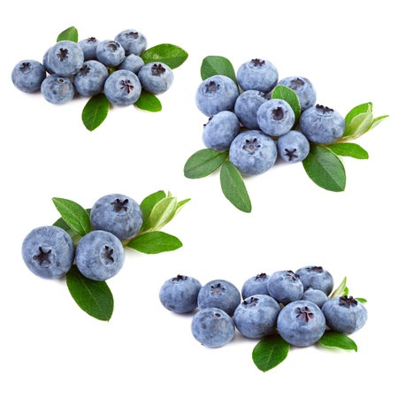 blueberries collage Stock Photo