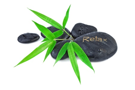 Bamboo leaves and zen stones  Spa and health care concept photo