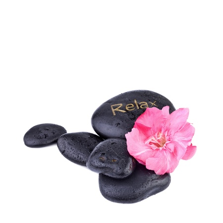 spa concept, pink flower with zen stones photo