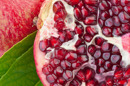 pomegranate juice: pomegranate fruit in close up