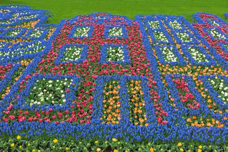 lisse: Bloemen patroon in nederlands lentetuin Keukenhof, Lisse, Nederland