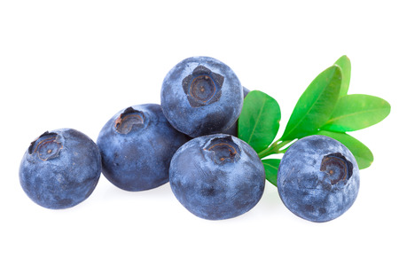 Blueberries isolated Stockfoto