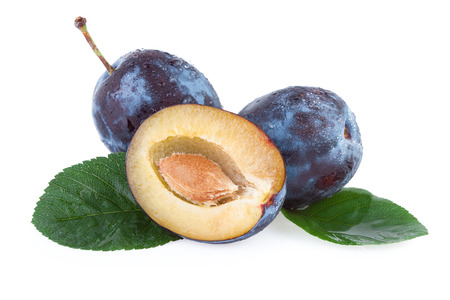 plum: Plum Fruit
