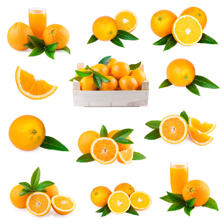 orange fruit collection set