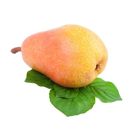 over white: pear fruit over white