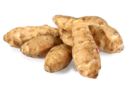 sunroot tubers or topinambur or jerusalem artichoke  (Helianthus tuberosus)