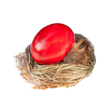 red easter egg in a bird nest photo