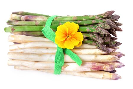 bundles: two bundles of asparagus vegetable