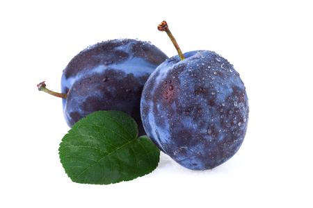 over white: fresh plum fruit over white
