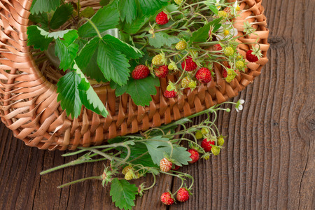 'wild strawberry: basket of wild strawberry on wooden background Stock Photo