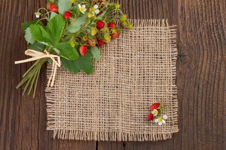 wild strawberries on rustic background photo