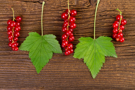 redcurrant: redcurrant berries and leaves over old wooden background