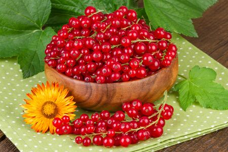 redcurrant: redcurrant berries on green polka dots napkin