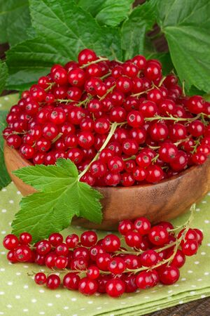 red currant: Red Currant Green Leaf