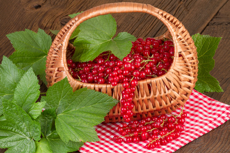 redcurrant: Basket of redcurrant with green leaves on red checkered tablecloth