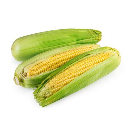 maize: Corn Maize Isolated Stock Photo
