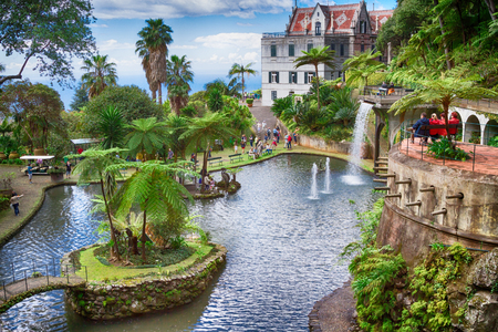 FUNCHAL, MADEIRA - APRIL 14, 2015: The Monte Palace Tropical Garden presents an area of 70.000 square meters with exotic plants collection coming from all over the world. Redakční
