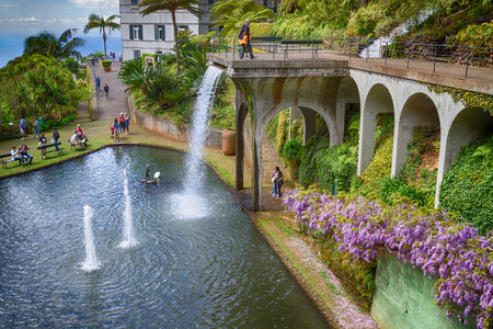 tropical garden: FUNCHAL, MADEIRA - APRIL 14, 2015: The Monte Palace Tropical Garden presents an area of 70.000 square meters with exotic plants collection coming from all over the world. Editorial