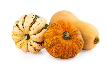 on a white background: pumpkins assorted mix