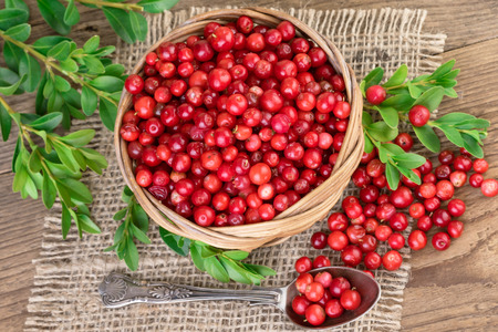 Lingonberry basket top view Stock Photo