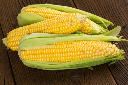 maiz: mazorca de maíz del maíz dulce