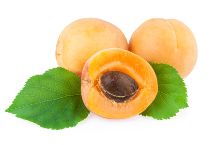 studioshot: Apricot isolated Stock Photo