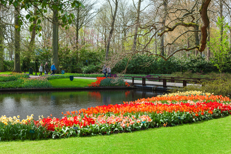 hectares: Keukenhof, Lisse, Netherlands - April 08, 2014: Keukenhof is the worlds largest flower garden with 7 million flower bulbs on an area of 32 hectares.