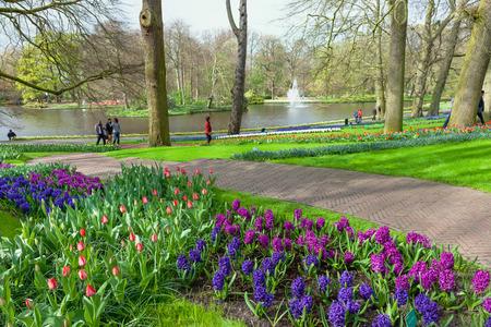 hectares: Keukenhof, Lisse, Netherlands - April 08, 2014: Keukenhof is the worlds largest flower garden with 7 million flower bulbs on an area of 32 hectares.
