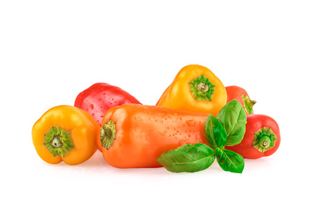 bell peppers: Bell Peppers Multicolored