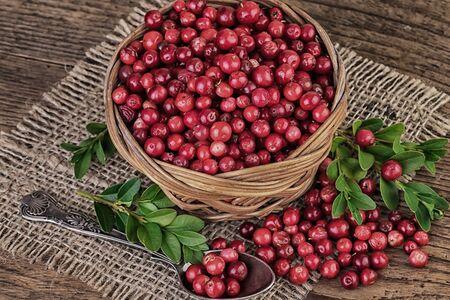 arandanos rojos: Arándanos de la vendimia