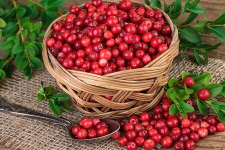 arandanos rojos: Cesta de arándanos rojos Foto de archivo