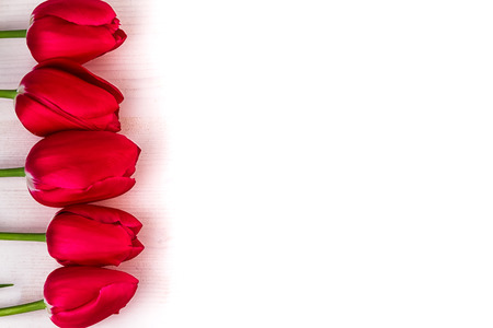 text space: Red Tulips on light wood border text space