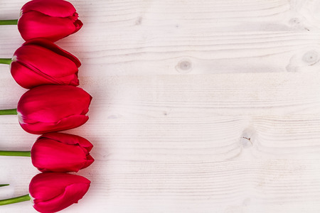 text space: Red Tulips on light wood with free text space Stock Photo