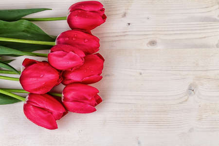 text space: Tulips Red on light wooden background text space Stock Photo