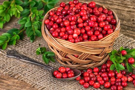 arandanos rojos: ar�ndanos cesta Foto de archivo