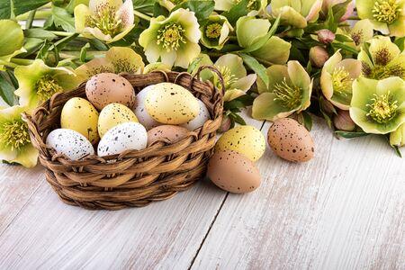 colores pastel: canasta de huevos de Pascua con flores de la primavera colores pastel